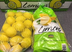 Gold Cup Fresh imports first Argentina lemons via Savannah