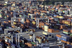Savannah continues to build container volumes