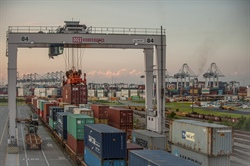 Savannah sustains rise in containerized trade