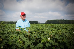 Gary Bell of Bell Farms and his family move the cotton they grow through the Port of Savannah.